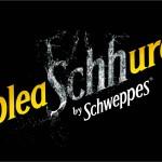 Logo pleaSchhure